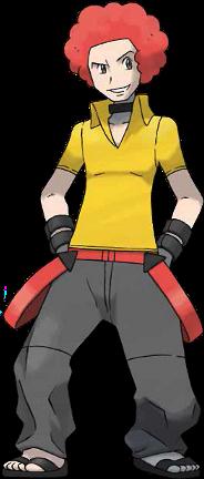 Conseil 4 Adrien Pokémon Platine