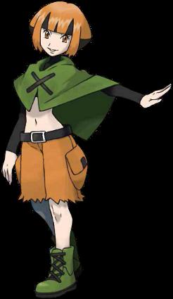 Flo de Vestigion Pokémon Platine