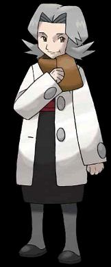 Conseil 4 Terry Pokémon Platine