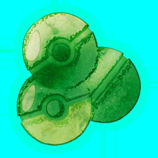 Zone de Pokémon Rumble Rush - Mer Dracaufeu