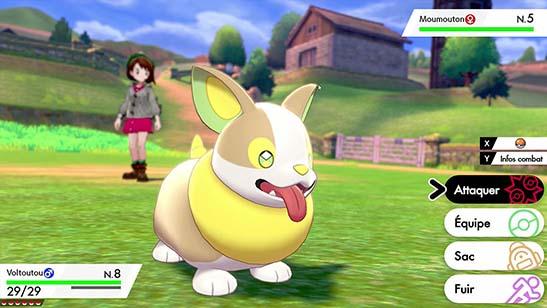 Voltoutou Pokémon Épée et Bouclier