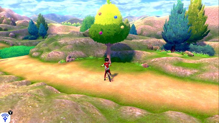 Arbre à baies - Route 3 Pokémon Épée et Bouclier