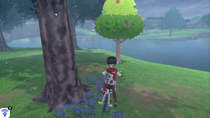 Arbre à baies - Bois de Clairjour Pokémon Épée et Bouclier