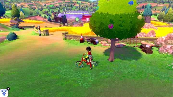 Arbre à baies - Route 4 Pokémon Épée et Bouclier