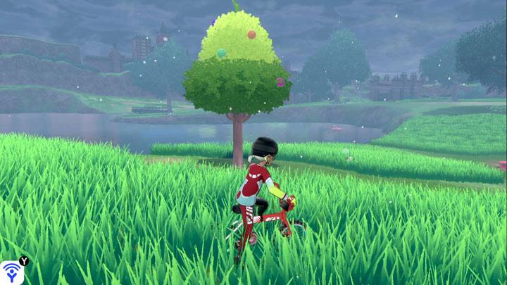 Arbre à baies - Plaine Verdoyante Pokémon Épée et Bouclier