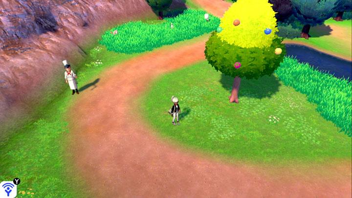 Arbre à baies - Route 5 Pokémon Épée et Bouclier