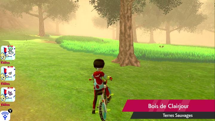 Bois de Clairjour Pokémon Épée et Bouclier
