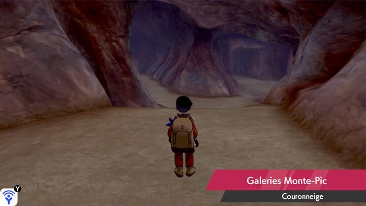 Galeries Monte-Pic Couronneige Pokémon Épée et Bouclier