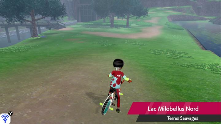 Lac Milobellus Nord Pokémon Épée et Bouclier