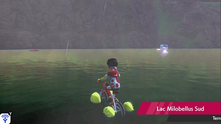 Lac Milobellus Sud Pokémon Épée et Bouclier