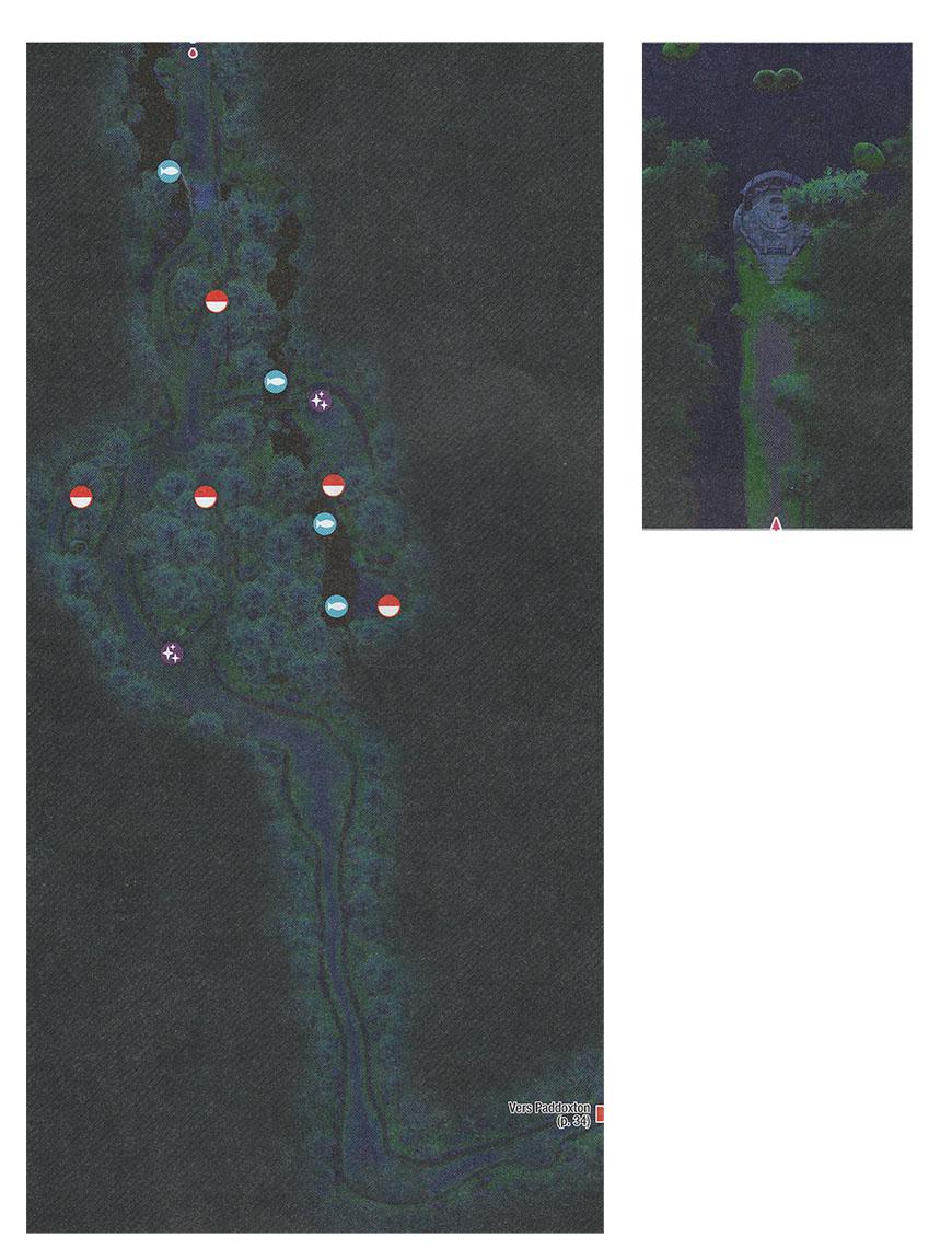 Carte - Forêt de Sleepwood Pokémon Épée et Bouclier