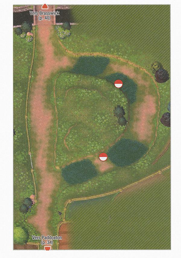 Carte - Route 1 Pokémon Épée et Bouclier