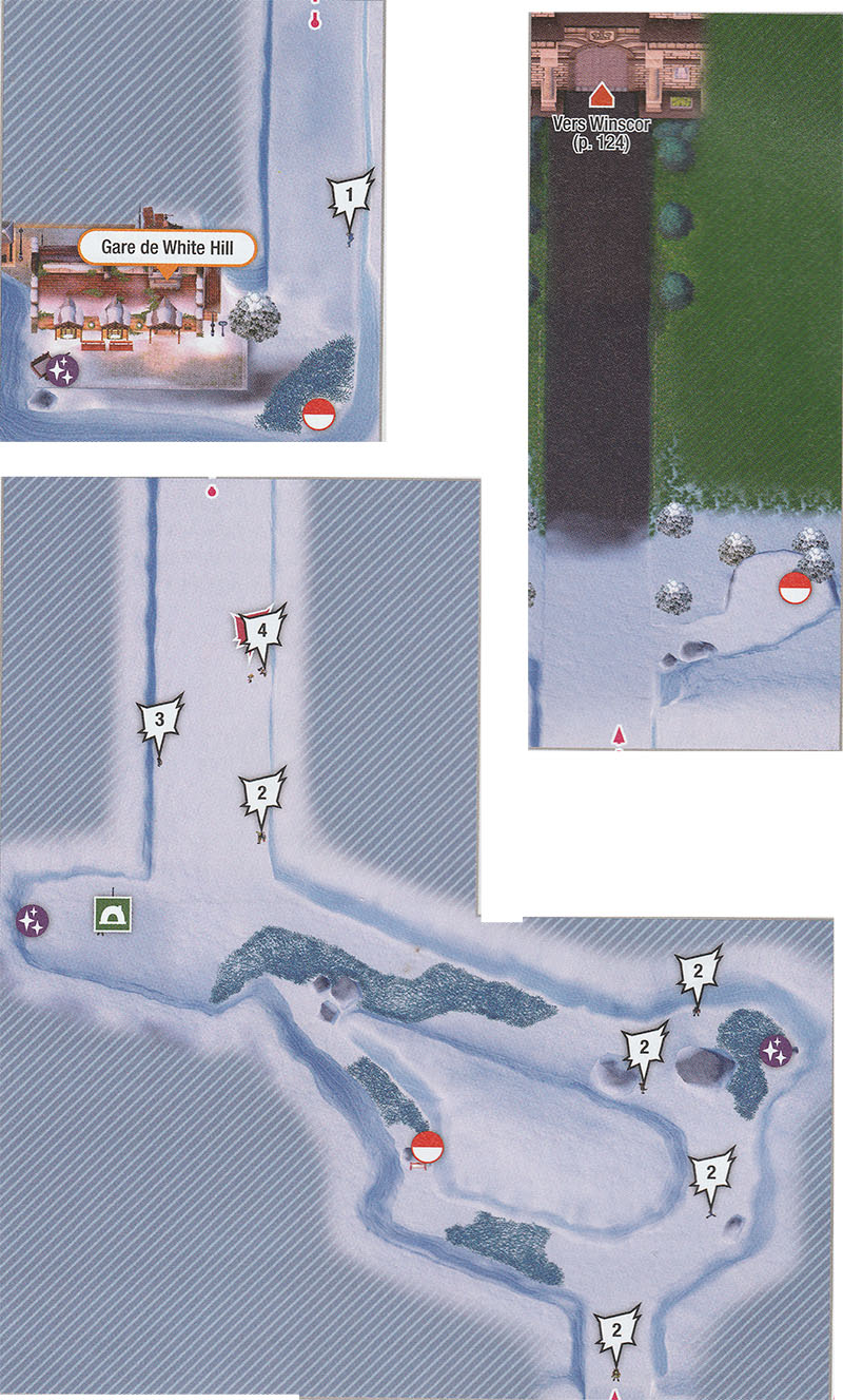 Carte - Route 10 Pokémon Épée et Bouclier