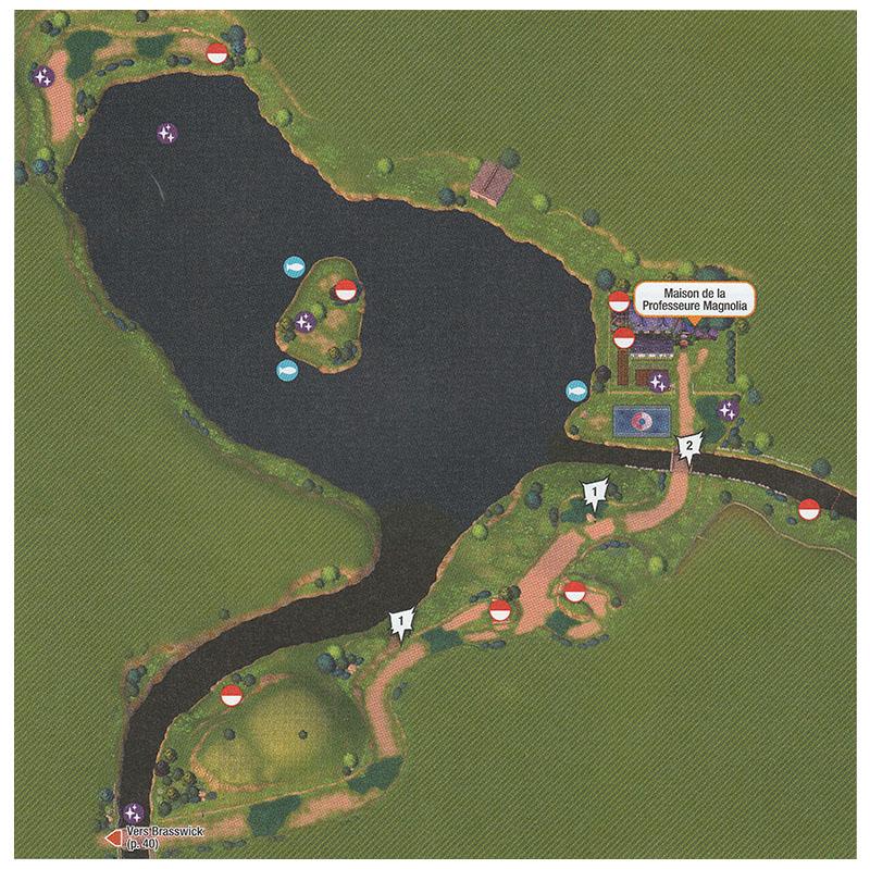 Carte - Route 2 Pokémon Épée et Bouclier