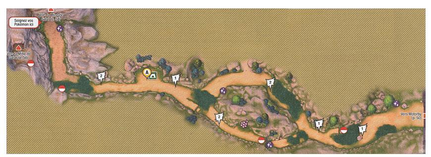 Carte - Route 3 Pokémon Épée et Bouclier