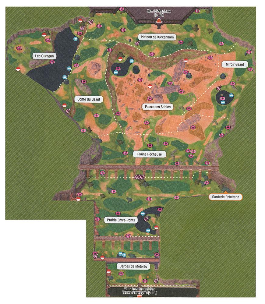 Carte - Fosse des Sables Pokémon Épée et Bouclier