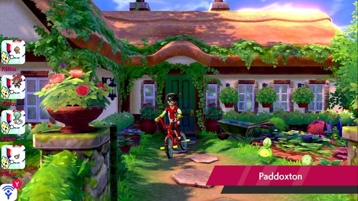 Paddoxton Pokémon Épée et Bouclier
