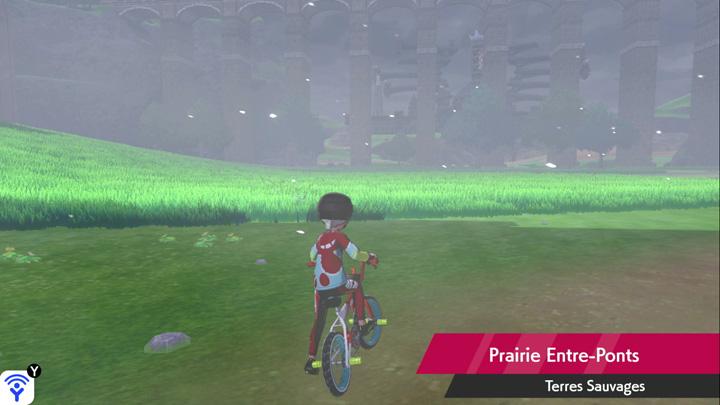 Prairie Entre-Ponts Pokémon Épée et Bouclier