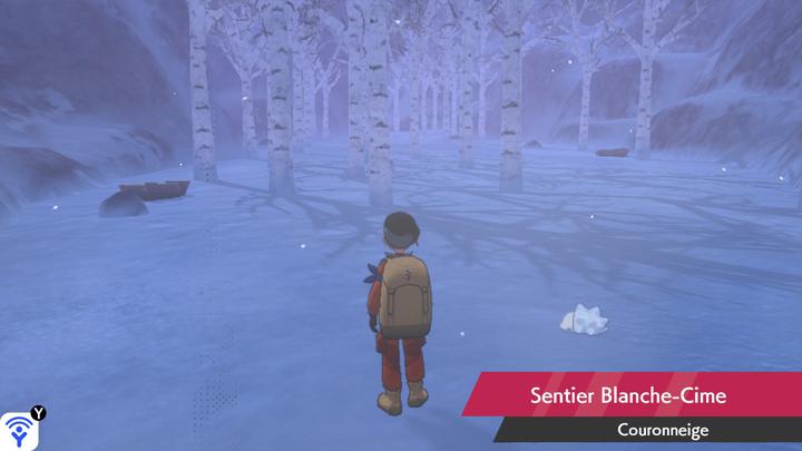 Sentier Blanche-Cime Couronneige Pokémon Épée et Bouclier