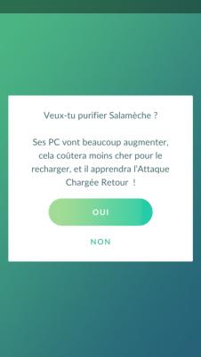 Pokémon GO - Pokémon Purifié 1