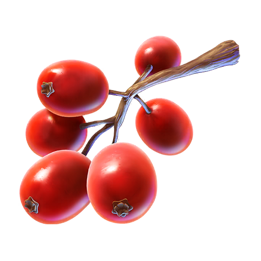 Copain Pokémon Flower Fruit - Pokémon GO