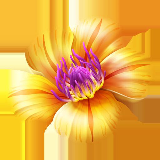 Copain Pokémon Tropical Flower - Pokémon GO