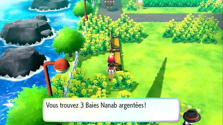 Baies sur la Route 17 - Pokémon Let's Go Pikachu et Évoli
