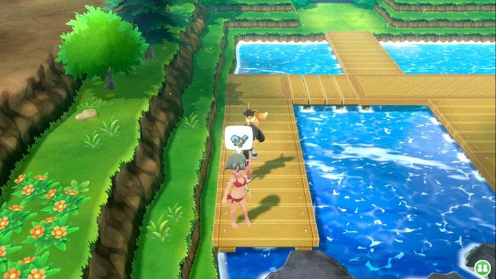Expert Carapuce Pokémon Let's Go Pikachu et Let's Go Évoli