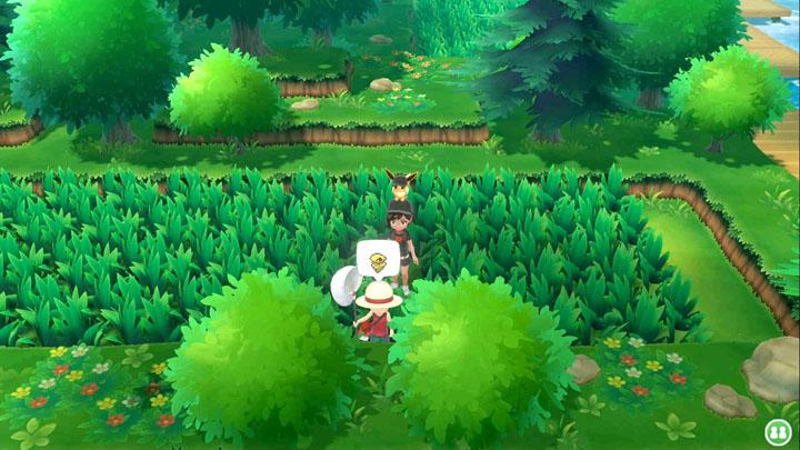 Expert Coconfort Pokémon Let's Go Pikachu et Let's Go Évoli