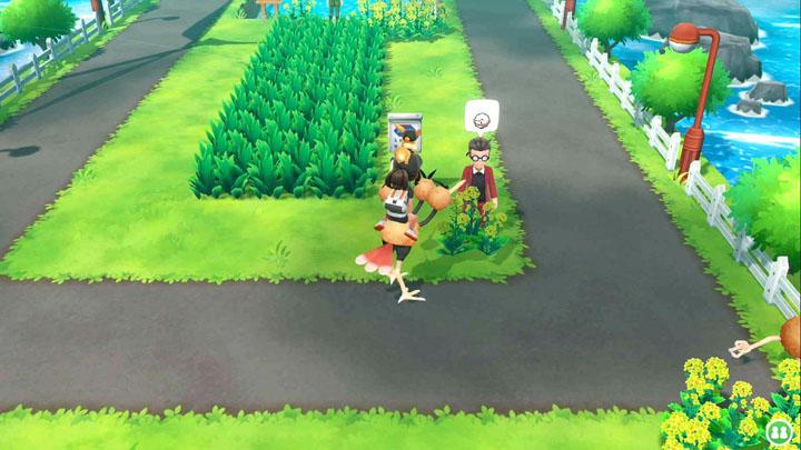Expert Électrode Pokémon Let's Go Pikachu et Let's Go Évoli