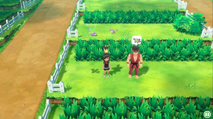 Expert Férosinge Pokémon Let's Go Pikachu et Let's Go Évoli