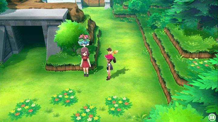 Expert Florizarre Pokémon Let's Go Pikachu et Let's Go Évoli