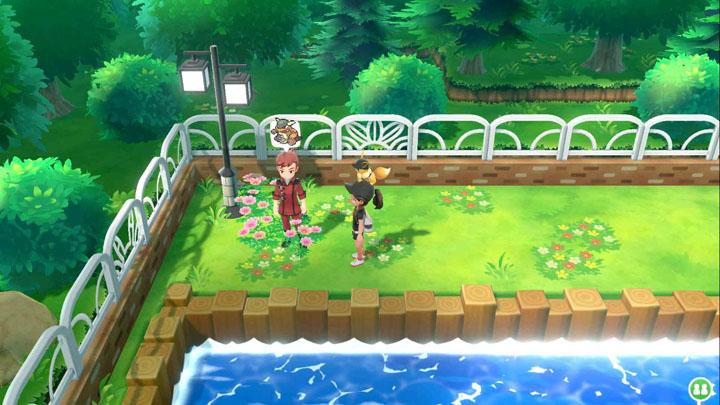 Expert Kangourex Pokémon Let's Go Pikachu et Let's Go Évoli