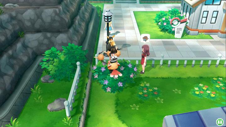 Expert Ortide - Pokémon Let's Go Pikachu et Let's Go Évoli
