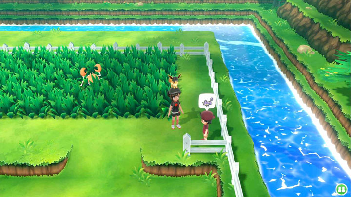 Expert Rattata Pokémon Let's Go Pikachu et Let's Go Évoli