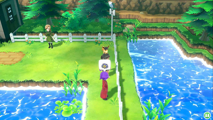 Expert Staross Pokémon Let's Go Pikachu et Let's Go Évoli
