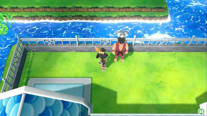 Expert Tartard Pokémon Let's Go Pikachu et Let's Go Évoli
