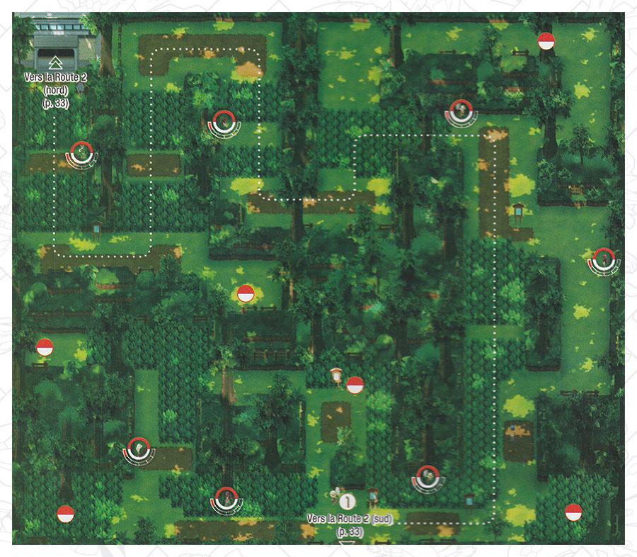 Forêt de Jade Pokémon Let's Go Pikachu et Let's Go Évoli