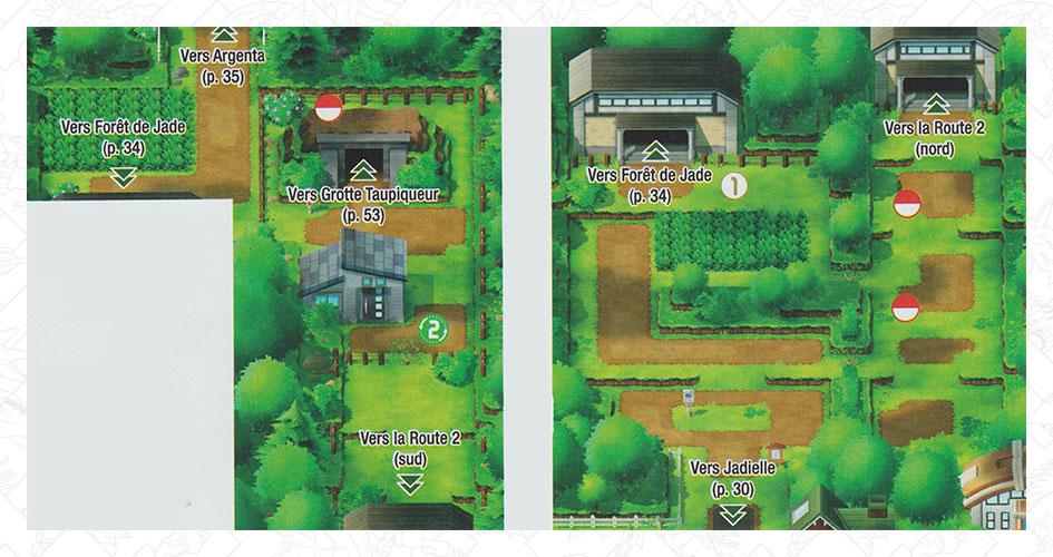 Route 2 Pokémon Let's Go Pikachu et Let's Go Évoli