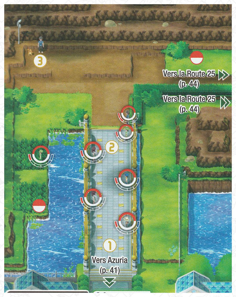 Route 24 Pokémon Let's Go Pikachu et Let's Go Évoli