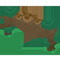 Arche Évoli Pokémon Quest