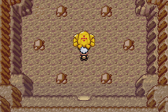 Capturer Regirock Pokémon Rubis et Saphir