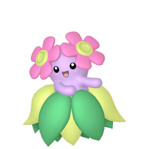 Artwork shiny de Joliflor Pokémon Épée et Bouclier