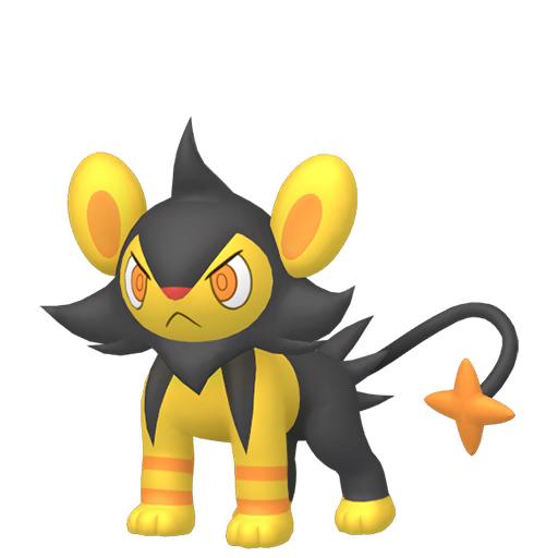 Artwork shiny de Luxio Pokémon Épée et Bouclier