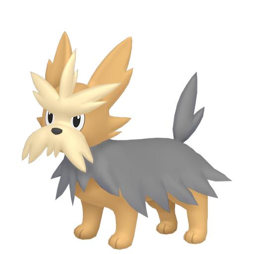 Artwork shiny de Ponchien Pokémon Épée et Bouclier