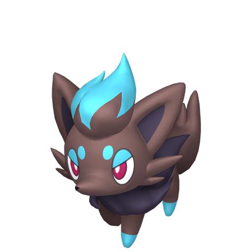 Artwork shiny de Zorua Pokémon Épée et Bouclier