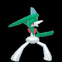 Modèle de Gallame - Pokémon GO
