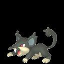 Modèle de Rattata d'Alola - Pokémon GO