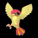 Modèle de Roucoups - Pokémon GO