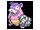 Pokémon flagadoss-g